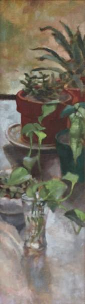 thejadeplant